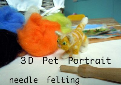 3D Pet Portrait Needle Felting