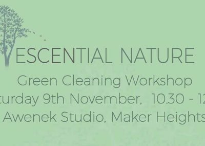 Green Cleaning Workshop