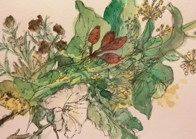 Illustrate Our Hedgerow with Family Foraging Kitchen & Rosie French (Online)