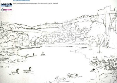 Activity: Spring on Millbrook Lake – Colouring in – Free PDF Download